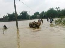 5 người chết, mất trắng 468 tỷ đồng vì mưa lũ