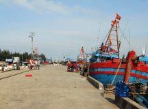 Sự cố Formosa nhiều cảng Cá cũng bị vạ lây