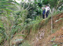 Dân 'tố' doanh nghiệp khai thác cát gây sạt lở sông Lam